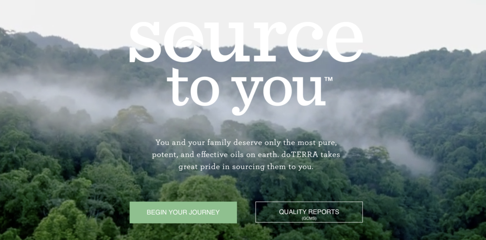 source to you website journey to glow
